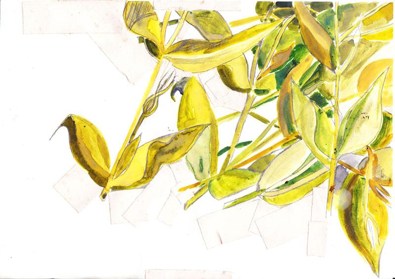 laboratorium haus 1 Lydia Müller – Malerei I
